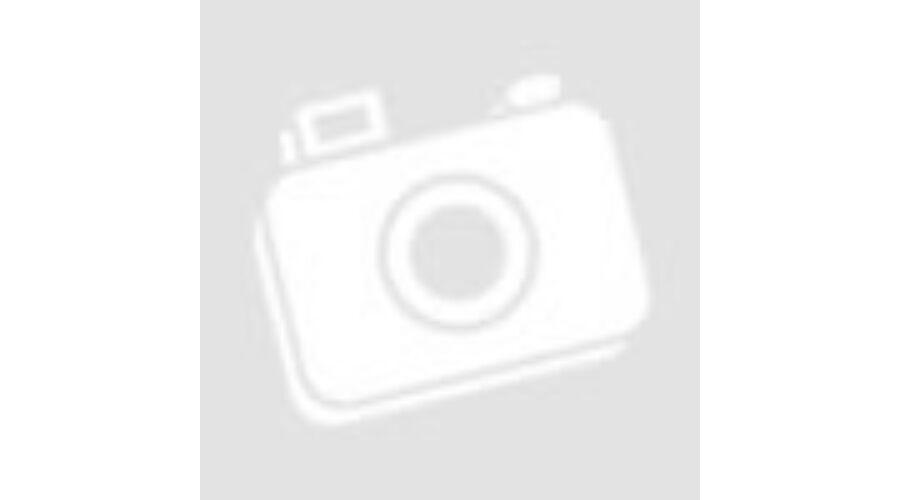 0eed9f8650 E5 Notebook táska Pasadena 15.6